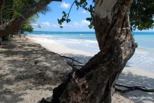 Beach-in-Haiti