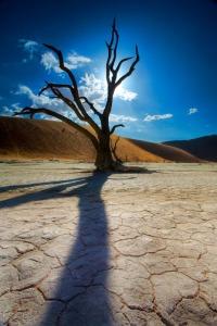 Africa-landscape