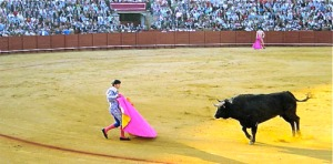 Bullfighter-in-ring-with-bull-Seville-Spain