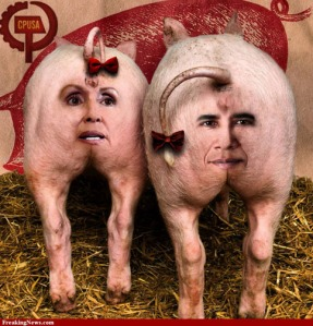 pig-butts