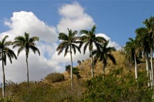 cuba-scenery