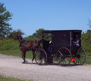 Amish in Jail for Buggy Infraction