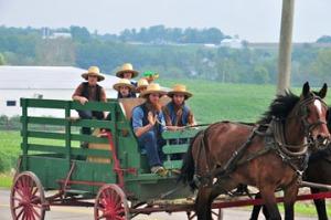 Amish: Ordnung Menswear