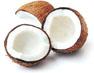 coconut-shells
