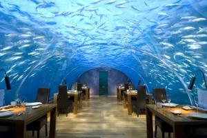 conrad-maldives-rangali-island-underwater-restaurant