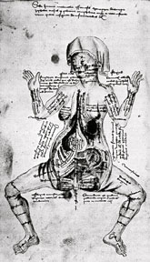 medieval-woman-in-medical-drawing