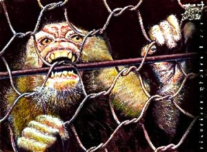caged-ape