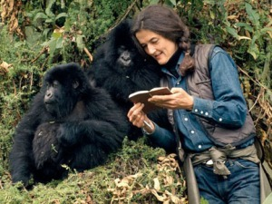 dian-fossey-with-gorillas