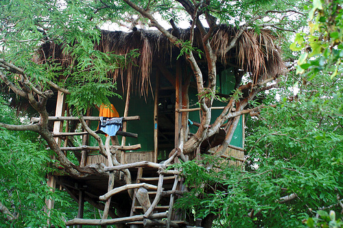 treehouse-china
